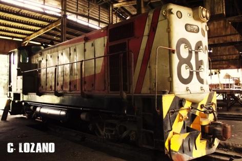 tren-el-salvador-04