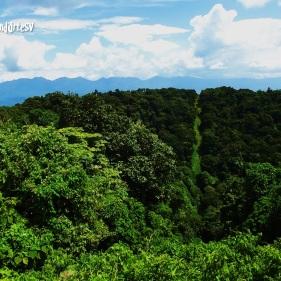 Cima y crater del Volcan Chingo, Guatemala-El Salvador