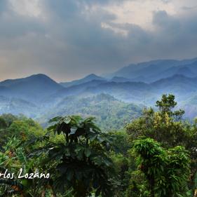 El Izotal, La Palma, Chalatenango, El Salvador