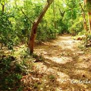 Parque Nacional Walter Thilo Deininger, La Libertad, El Salvador