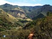 Reserva forestal El Limo, Metapan, Santa Ana, El Salvador