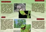 Biodiversidad Cinquera-2