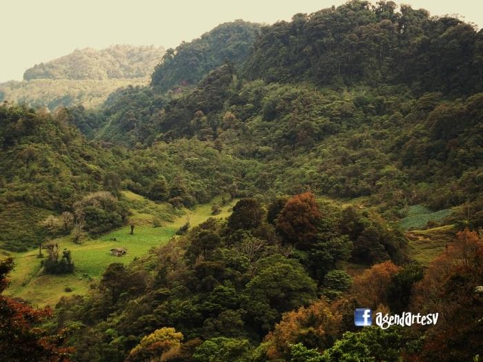 Reserva Biologica Guisayote, Honduras