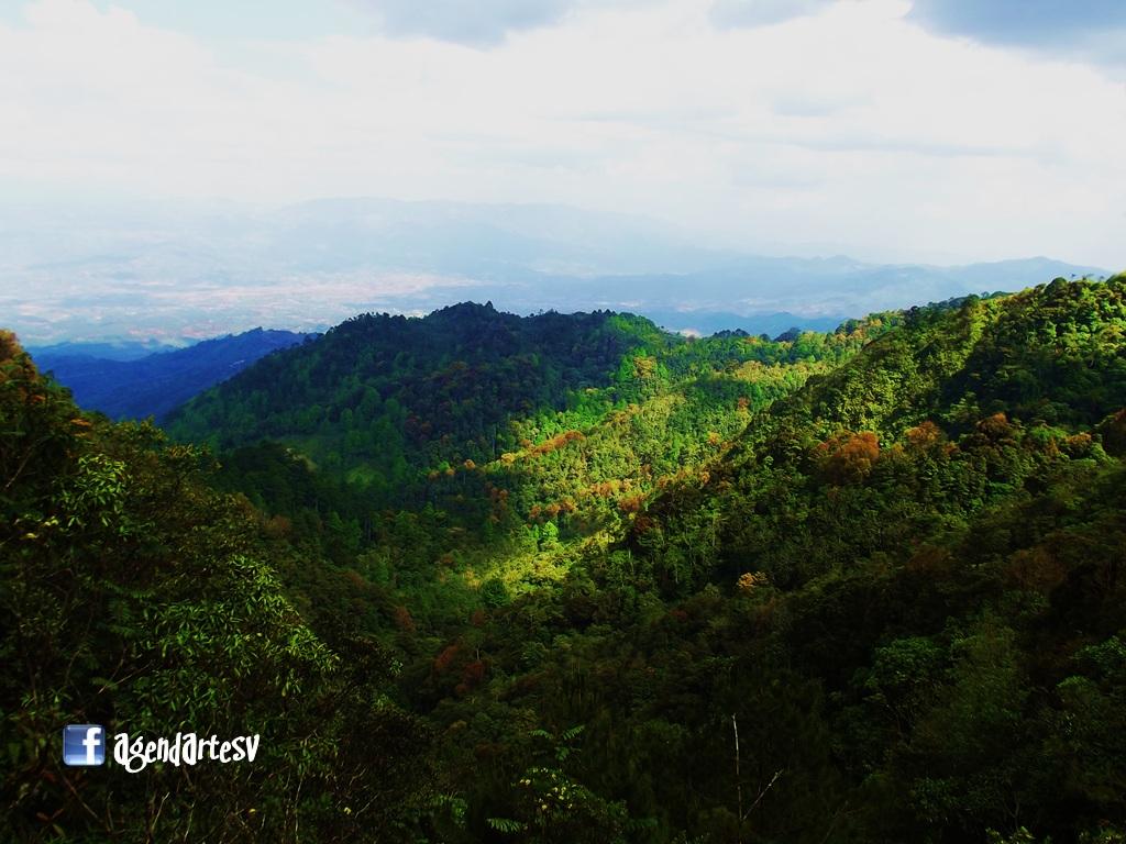 Reserva Biologica Guisayote, Ocotepeque, Honduras