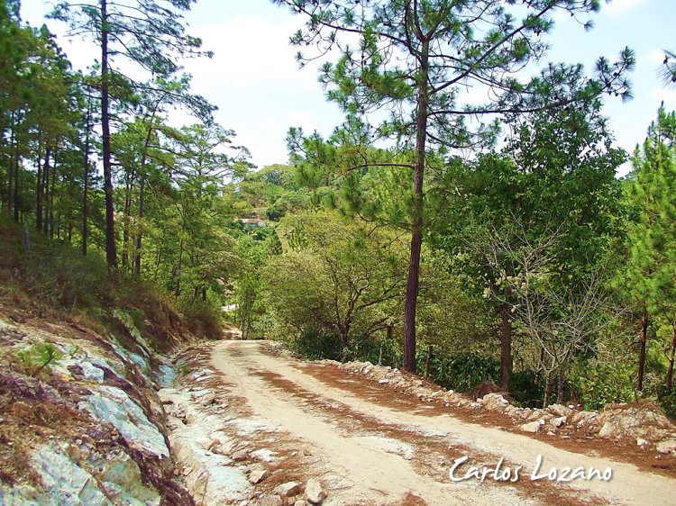 Reserva Tecomapa, Santa Fe, Ocotepeque, Honduras