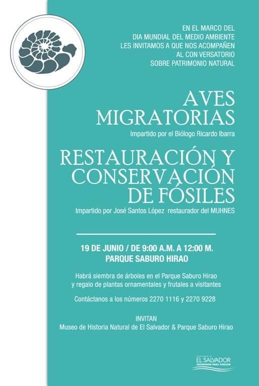 aves y fosiles