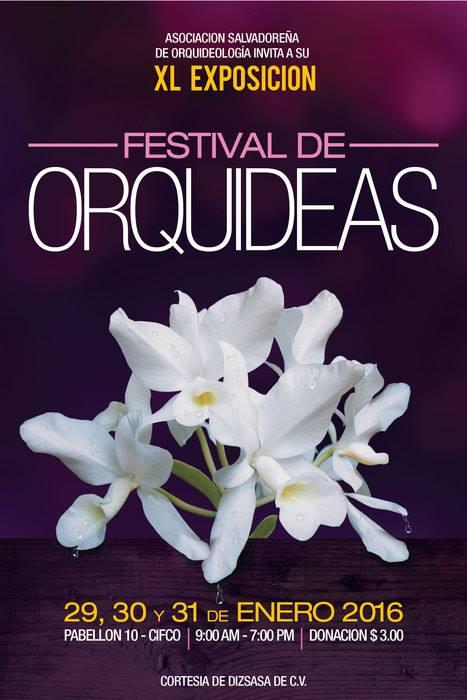 festival de orquideas
