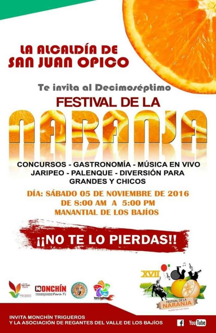 festival-de-la-naranja
