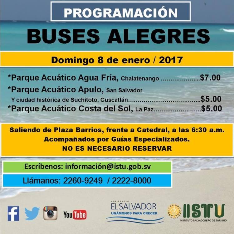 buses-alegres-1