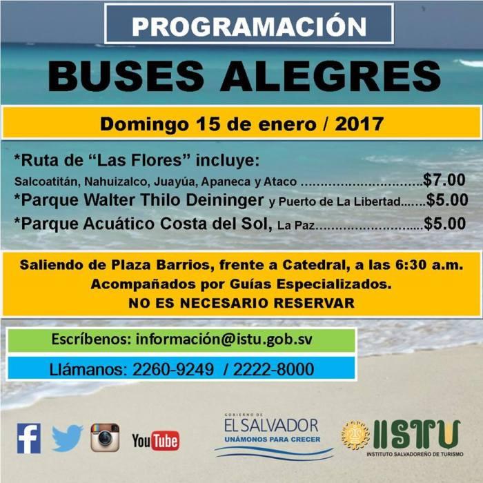 buses-alegres-2