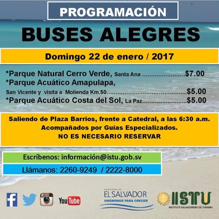 buses-alegres-3