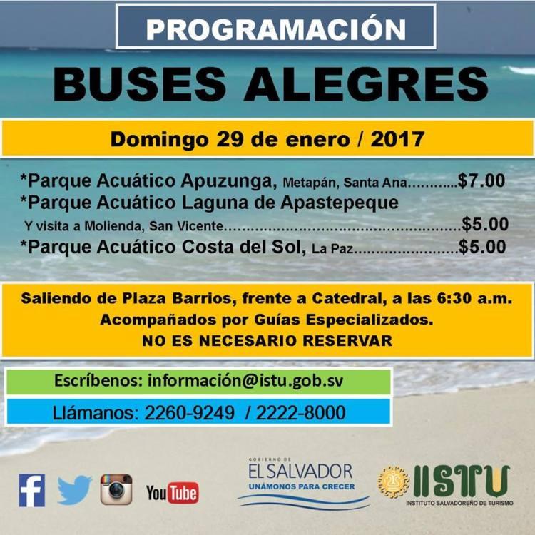buses-alegres-4