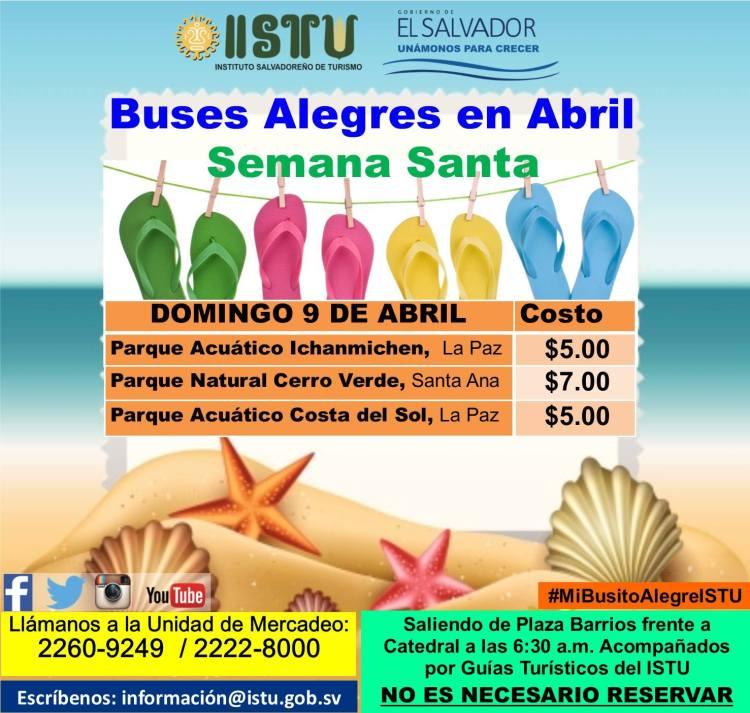buses alegres abril 01