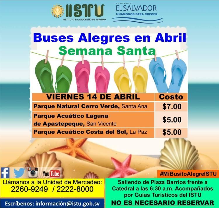 buses alegres abril 04