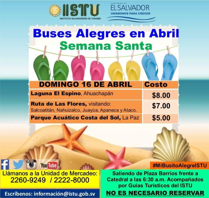 buses alegres abril 06